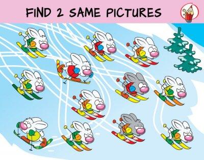 Lustige Hasen Beim Skifahren Finde Zwei Gleiche Bilder