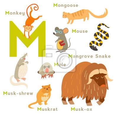 M Brief Tiere gesetzt. Englisches Alphabet. Vektor-Illustration, isoliert auf weißem Hintergrund