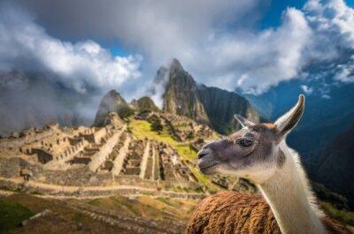 Fototapete Machu Picchu, UNESCO-Weltkulturerbe. Eines der neuen Sieben W