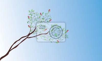 Magnolia im Frühjahr