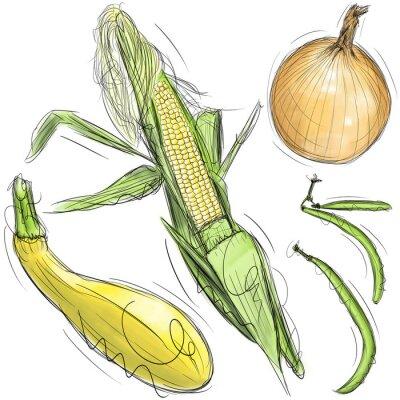 Mais, Zwiebel, Kürbis und grünen Bohnen