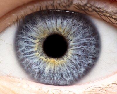 Fototapete Makrofoto des menschlichen Auges, Iris, Schüler, Augenpeitschen, Augenlider.