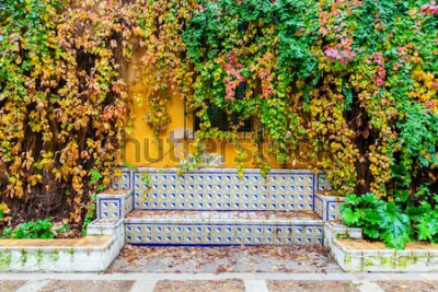 Fototapete malerisches Bild einer Bank mit traditionellen Fliesen vor einer Weinrebenmauer