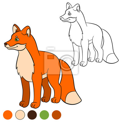 Malvorlage  Farbe: Fuchs  Kleine Süße Fuchs Lächelt  Fototapete