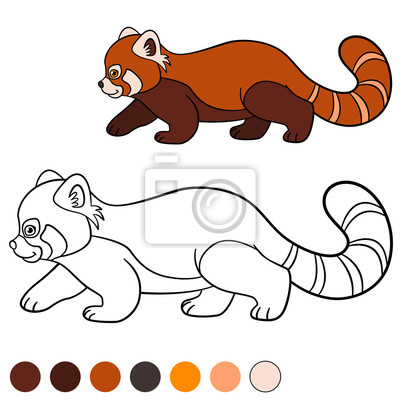Malvorlage Roter Panda Kleine Niedliche Rote Panda Geht Fototapete