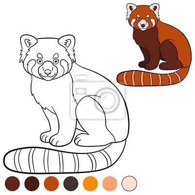 Malvorlage Roter Panda Kleine Niedlichen Roten Panda Lächelt
