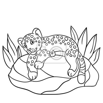 Malvorlagen. niedliche jaguar lächelt. fototapete • fototapeten ...