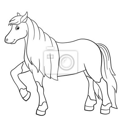Malvorlagen. nutztiere. nettes pferd. fototapete • fototapeten ...