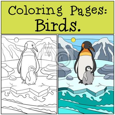 Malvorlagen: vögel. mutter pinguin mit ihrem baby. fototapete ...