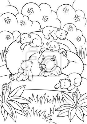 Malvorlagen Wilde Tiere Freundlicher Bär Betrachtet Kleine