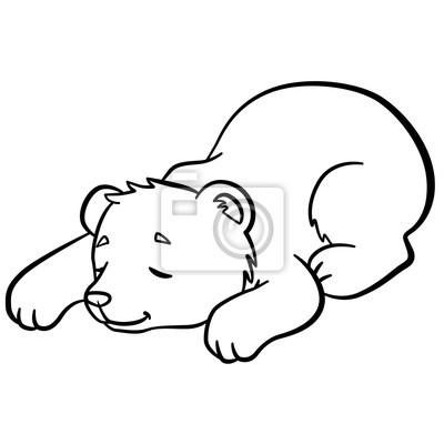 Malvorlagen. wilde tiere. kleine niedliche babybär schläft ...