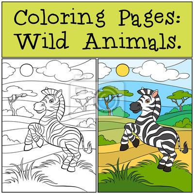 Malvorlagen: wilde tiere. kleine niedliche zebra. fototapete ...