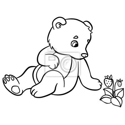 Malvorlagen Wilde Tiere Kleine Süße Baby Tragen Fototapete