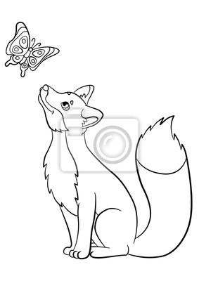 Malvorlagen Wilde Tiere Kleine Süße Fuchs Blickt Auf Den