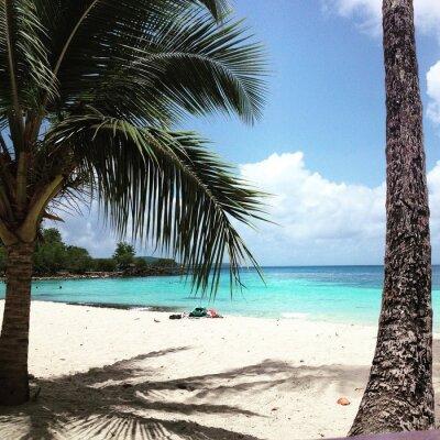 Fototapete Martinique