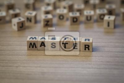 Master in Holzwürfel geschrieben