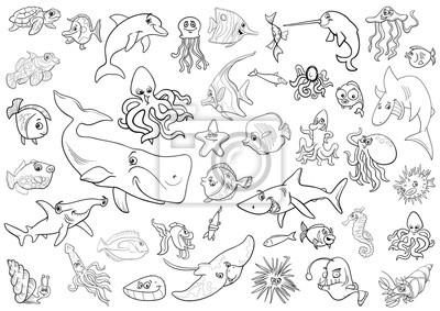 Fototapete Meer Leben Tieren Malvorlage Seite