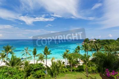 Fototapete Meerblick von oben, tropischer Strand mit Kokosnusspalmen