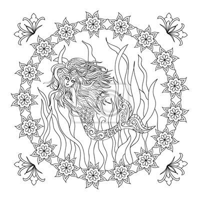Meerjungfrau Zentangle Ausmalbilder Fototapete Fototapeten Färben