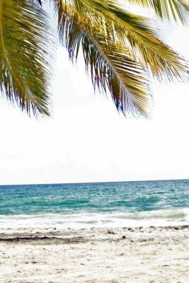 Fototapete Mer, antillen, caraibes, tropiques ...