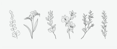 Fototapete Minimal botanical hand drawing design for logo and wedding invitation. Floral line art.  Flower and leaves design collection for bouquets decoration, card and packaging background.