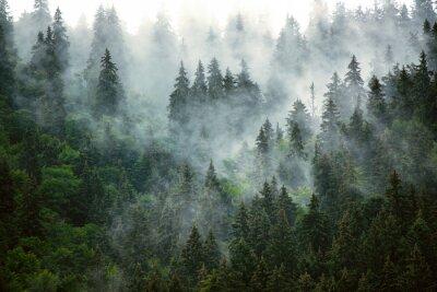 Fototapete Misty mountain landscape