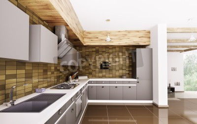 Moderne küche mit spüle, gasherd und dunstabzugshaube innen3d ...