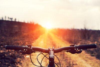 Fototapete Mountainbike bergab absteigend schnell auf dem Fahrrad. Blick von