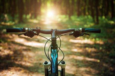 Fototapete Mountainbiken Sie hinunter den Berg, der schnell auf Fahrrad fährt. Blick von