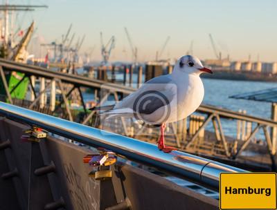 Möwe Mit Ortsschild Hamburg Fototapete Fototapeten Passagierschiff