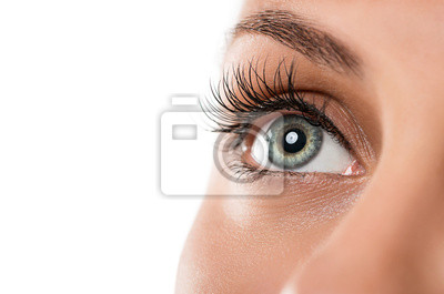 Fototapete Nahaufnahme der natürlichen weiblichen Auge isoliert auf weißem Hintergrund