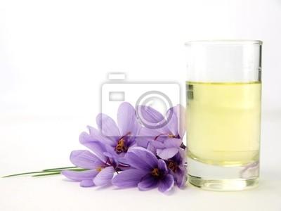 Nahaufnahme der schönen blauen Safran Crocus Blumen