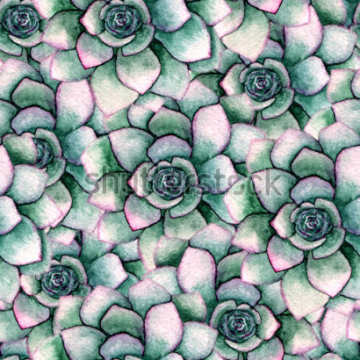 Fototapete Nahtloses botanisches Muster des Aquarells mit Succulents