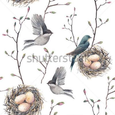 Fototapete Nahtloses Muster des Aquarells mit Nest, Vögeln und Baumzweigen. Vektor Hand gezeichneten Frühlingshintergrund. Weinlesetapete mit Schwalbe und Eiern