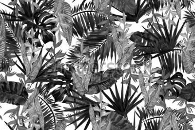 Fototapete Nahtloses Muster des tropischen Schwarzweiss-Hintergrundes. Aquarellmalerei Monochrom-Stil.