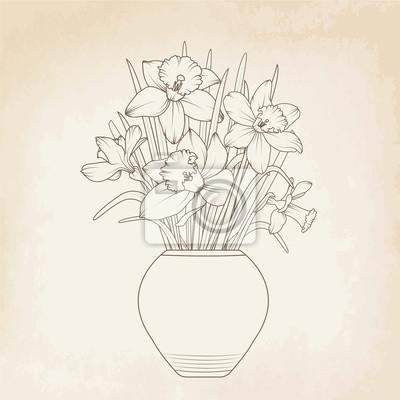 Narzisse narzisse blumentopf vase. isoliert frühjahr blumenstrauß ...