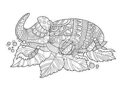 Nashornkäfer Insekt Färbung Buch Vektor