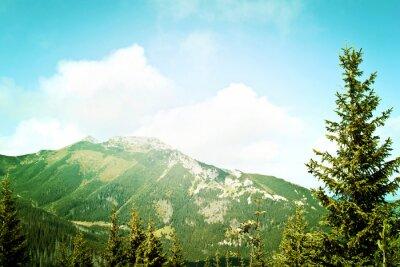 Fototapete Natur in den Bergen.