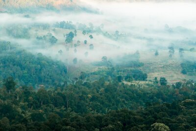 Fototapete Nebel im Tal