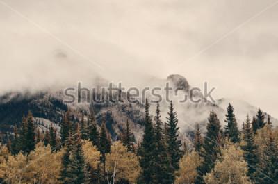Fototapete Nebelige Berge und Wald Banff-Nationalparks in Kanada.