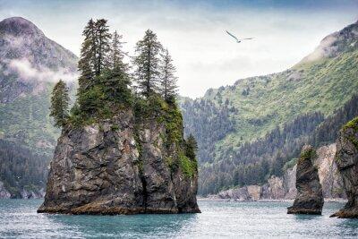 Fototapete Nebeliger Tag, Kenai Fjords-Nationalpark, Alaska, USA