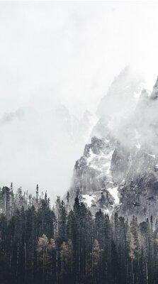 Fototapete neblige Landschaft in Tatry