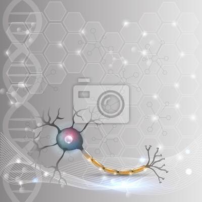 Nervenzelle anatomie detaillierte darstellung auf einem abstrakten ...