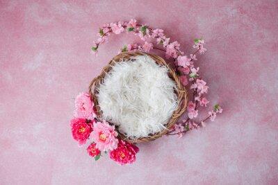 Fototapete Newborn digital backdrop with flowers