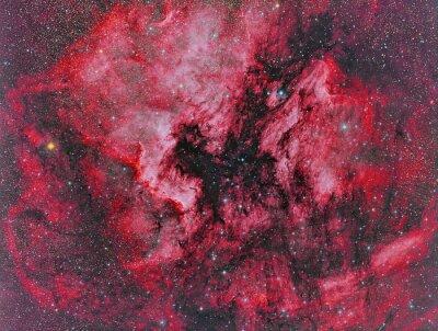 Fototapete NGC 7000 Nordamerika Nebelfleck abgebildet mit einem Teleskop und einer wissenschaftlichen CCD-Kamera