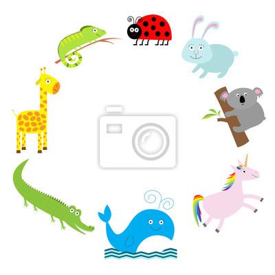 Niedlichen Tier-Rahmen. Baby-Hintergrund. Marienkäfer, Koala, wal, Kaninchen, einhorn, alligator, Giraffen und Leguan. Flache Bauweise