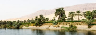 Fototapete Nile shore in nature