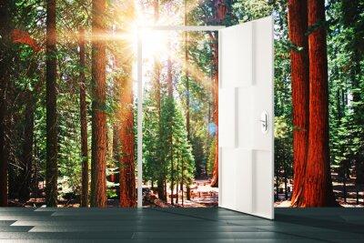 Fototapete Offene Tür zum sonnigen Waldkonzept