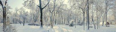 Fototapete Öffentlicher Park aus Europa mit Bäumen und Ästen bedeckt mit Schnee und Eis, Bänke, Lichtmast, Landschaft.