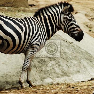Ölgemälde Zebra / Fotoeffekt Ölgemälde